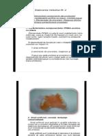 Elementele Componente Ale Protezelor Partiale Mobilizabile Acrilice Cu Placa