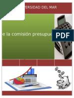 Reporte final; Comisión Presupuestos y Enlace