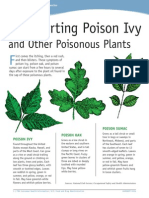 Outsmarting Poison Ivy and Other Poisonous Plants_0114
