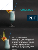 233410291 Cocktail Prezentare