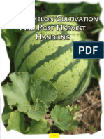 Watermelon Cultivation and Post Harvest Handling