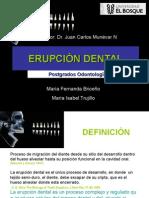 seminarioerupcion-121020111800-phpapp02