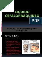 EXPOSICION LIQUIDO CEFALORRAQUIDEO JOAO.pptx