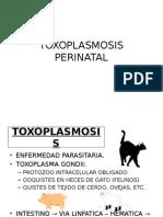 Toxoplasmosis Perinatal
