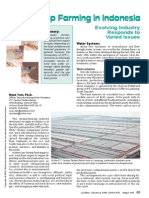 Shrimp Farming in Indonesia