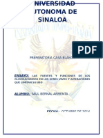 oligosacaridos.doc