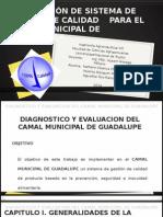 Elaboracion de Un SGC Para El Camal de Guadalupe