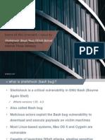 Shellshock (Bash Bug) Vulnerability DDoS Botnet Presentation Slideshow