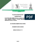Taller de Investigación 1 (Anteproyecto Bambu)