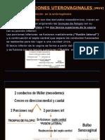 9_MALFORMACIONES_UTEROVAGINALES.ppt