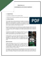 PRÀCTICA N6 Acido Fumarico Final Final