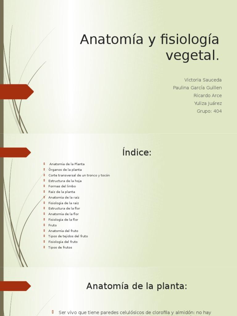 Anatomía y Fisiología Vegetal