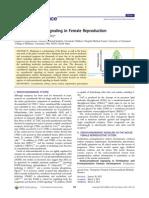 Endocannabinoid Signaling in Female Reproduction