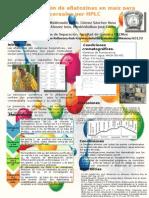 cartel aflatoxinas (1).2.3.pptx