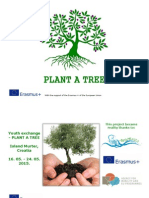 Plant a Tree Info Pack