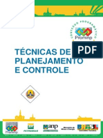 PROMINP-Técnicas de Planejamento e Controle