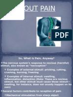 painpresentation-100316212754-phpapp02