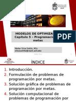 Programación de Metas