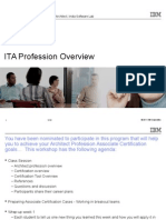 ITA Profession Overview
