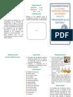 modelo de triptico nuevo.pdf