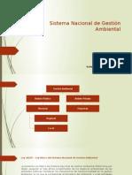 Gestion Ambinetal en el Perú