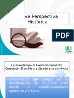 Breve Perspectiva Histórica