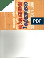 Organização e Administração Um enfoque Sistêmico(2)