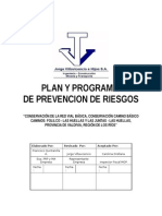 PLAN PREV.FOLILCO.doc