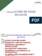 Producción de Vinos Blancos