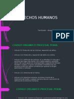 Presentación Derechos Humanos COPP
