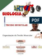 Tecido Muscular - STUART 2014 (1)