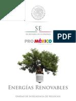 130726 DS Energias Renovables ES