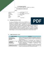 Programacion Anual 4°de secundaria 2014- modelo