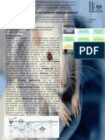 hIPOGLUCEMIANTES.pptx