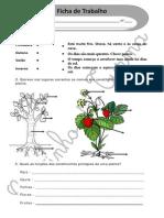Estações_Plantas