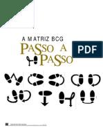 A Matriz Bcg