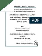 Caracterización Fitosanitaria Plagas Nopal SIG Milpa Alta