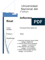 Informe Finalv