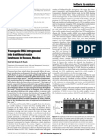 Transgenic DNA. Quist - Chapela 2001