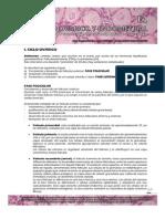 Guías de Embriología 2013 __ Ciclo Ovarico y Endometrial-guias de Lectura 2013