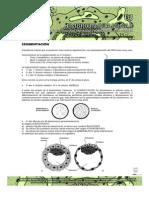 Guías de Embriología 2013 __ Embrion Bilaminar-guias de Lectura 2013