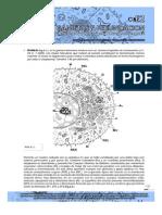 Guías de Embriología 2013 __gametas y Fecundacion- Guias de Lectura 2013