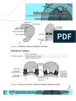 Guías de Embriología 2013 __desarrollo de Cara- Guias de Lectura 2013