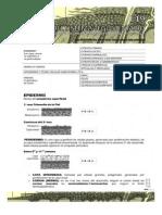 Guías de Embriología 2013 __desarrollo Del Sistema Tegumentario- Guias de Lectura 2013