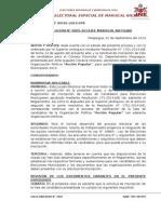 REVOCADA - InADMISIBLE Modalidad de Eleccion, Licencia, Autorizacion FIRME, Constancia d Registro Formato Plan de Gobierno