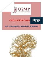 186950277-Irrigagacion-Cerebral.pdf