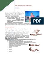 Patología Del Sistema Nervioso i