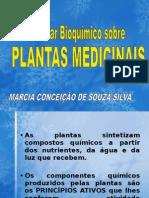 PLANTAS MEDICINAIS.ppt