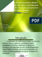 Morfologia dos Protozoários Ciliados