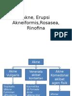 Akne, Erupsi Akneiformis,Rosasea, Rinofina